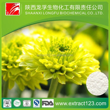 Manufacturer Sales chicory root extract inulin
