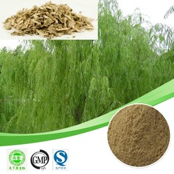 Hot sales plant extract White willow bark extract/Salicin 98%/Anti-Rheumatism Free sample