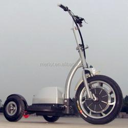 brushless 3 wheel 36v 12ah 2013 super pocket bike