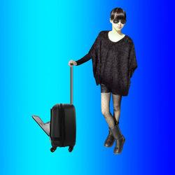 OEM laptop suitcase maleta luggage bag pilot case for British, China Brand Customize Factory
