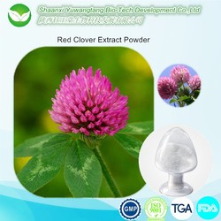 Hot selling Red Clover Extract Powder Biochanin A 98%