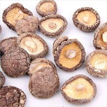 dried shitake mushroom