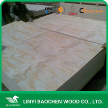 canadian maple plywood /radiata pine plywood / Okoume/Bingantor/Pencil Cedar poplar core for packing/furniture/construction