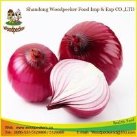 fresh onions myanmar fresh onion