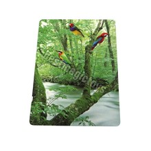 2015 Best-selling paintings birds with GOOD price birds cards as promotional gift