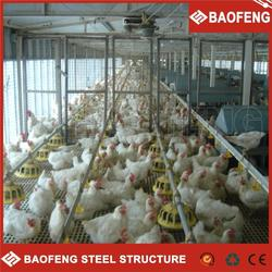 modern pet cages chicken and rabbit