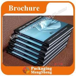 Cheap professional book/album/brochure/magazine/leaflet/flyer/poster