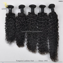 2015 Top Selling Products Stock Lots Chemical Free One Donor mongolian kinky curly hair