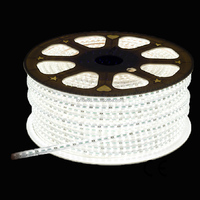 Wholesale smd 3014 waterproof flexible white 220v floor light led strip lighting with CE ROHS
