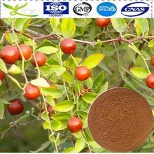 Fuente de la fábrica 100% natural espina fecha extracto de la semilla