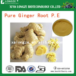 China herb medicine for arthritis high-quality ginger root extract powder with gingerols 5%