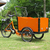 cargo tricycle bicycle with wooden box