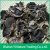 Dried Auricularia Auricula or Dried Black Fungus