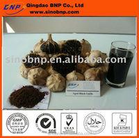 BNP Supply Aged Black Garlic Extract Powder & Liquid