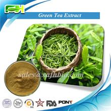 20%-98% Green Tea Polyphenols