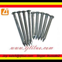 low price galvanized hardened steel concrete nails factory