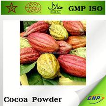 raw organic cocoa powder manufacturers