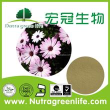 Free samples natural 4% polyphenols echinacea extract , bulk wholesale echinacea purpurea extract 4% chicoric acid