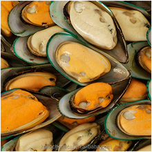 Green Lipped Mussel Extract Powder Nature's Own Anti-Inflammatory