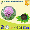 china manufactory 100% pure natural P.E powder/Red Clover Extract powder Total isoflavones 1%~60%