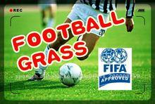 FIFA standards 50mm high quality soccor artificial grass