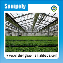 Cheapest and Qualified Agricultural Greenhouse