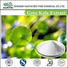Wholesale high quality Triterpenoid Saponis 10%~80% Hplc/pure and natural Gotu Kola Extract