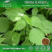 Nettle Leaf Extract 4:1 5:1 10:1