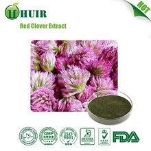 2015 hot sale free sample Red Clover Extract 8%20%40%