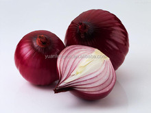 Fresh Type Red Onion from China S/M/L size