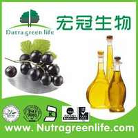 Black Currant Extract 25% Anthocyanidins Black Currant Oil Sofegel Capsule Black Currant Seed Oil