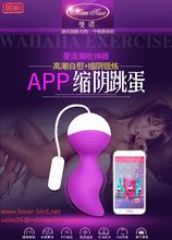 Wholesale - CPAM Cheap Price Sex Products Vibrating Egg Massage Pen Vibrator Powerful Mini Vibe Sex Toys For Women Wirh New Pack