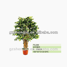 artificial ficus tree,artificial plants guangzhou,china new products