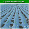 Cheap price plastic mulch film 200 micron for agriculture