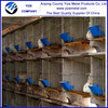 best selling galvanized meat rabbit cages /industrial rabbit cages (Factory)