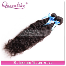 New arrival posh curl natural brazilian/malaysian virgin human hair wholesale