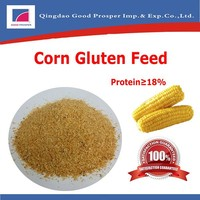 maize bran/corn bran gluten feed