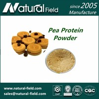 Europe Quality Standard Full Stocked Pea Protein Powder