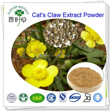 3% 5% Alkaloid High quality Natural Cat's Claw Extract