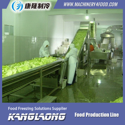 New Technology fruit and vegetable frozen line