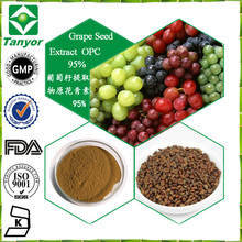 Natural water soluble grape seed extract(high orac value).organic grapefruit seed extract 95%