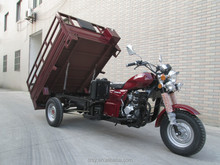 China new cargo tricycle 200cc with gas petrol new model