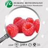 100% Natural Raspberry Extract, Raspberry Extract Powder, Raspberry Ketone 99%