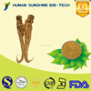 alibaba china supplier Angelica extract/Dong Quai extract medicine for blood circulation & sedative function