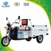 China popular green energy 3 wheel pickup cargo electric rickshaw