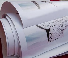 Leading manufacturer 260gsm cast coated glossy photo paper
