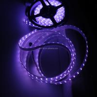 Christmas decoration 50,000h DC12V Flexible Waterproof 5 meters 28.8W 50 50 RGB LED Strip