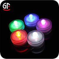 Promotional Gift Items Battery Operated Blue Led Lights