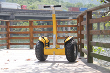 High selling standing balance golf scooter off road china motorcycle sale
