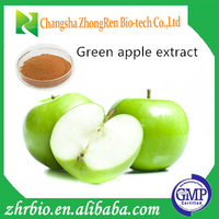 GMP Standard Green Apple Peel Extract Apple skin Extract